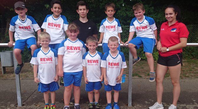 F-Jugend beschließt Sommersaison in Helmsheim